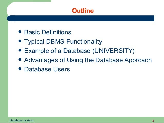 database access for application programs in dbms