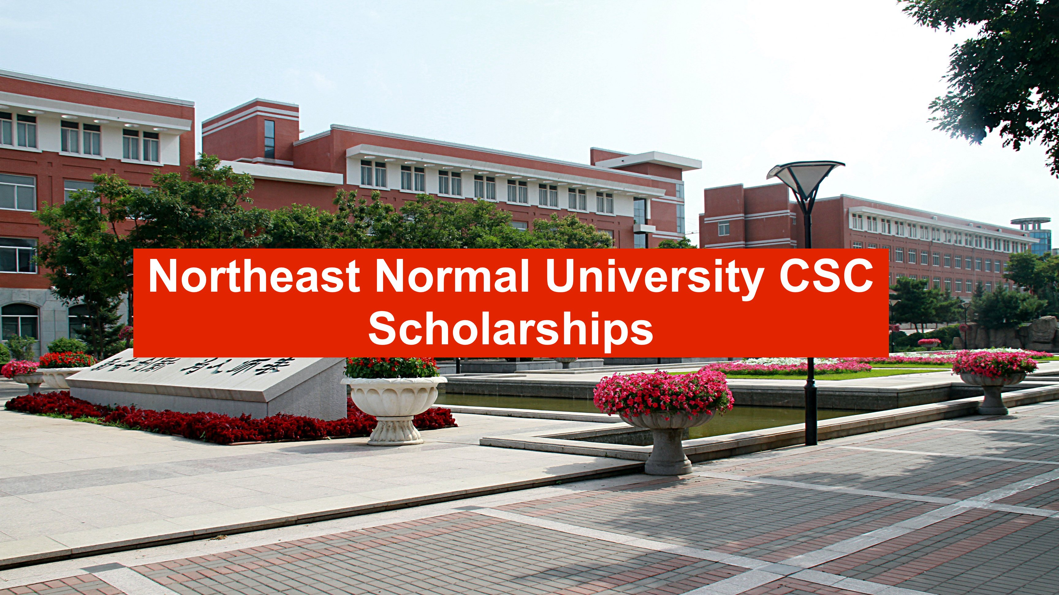 central china normal university online application