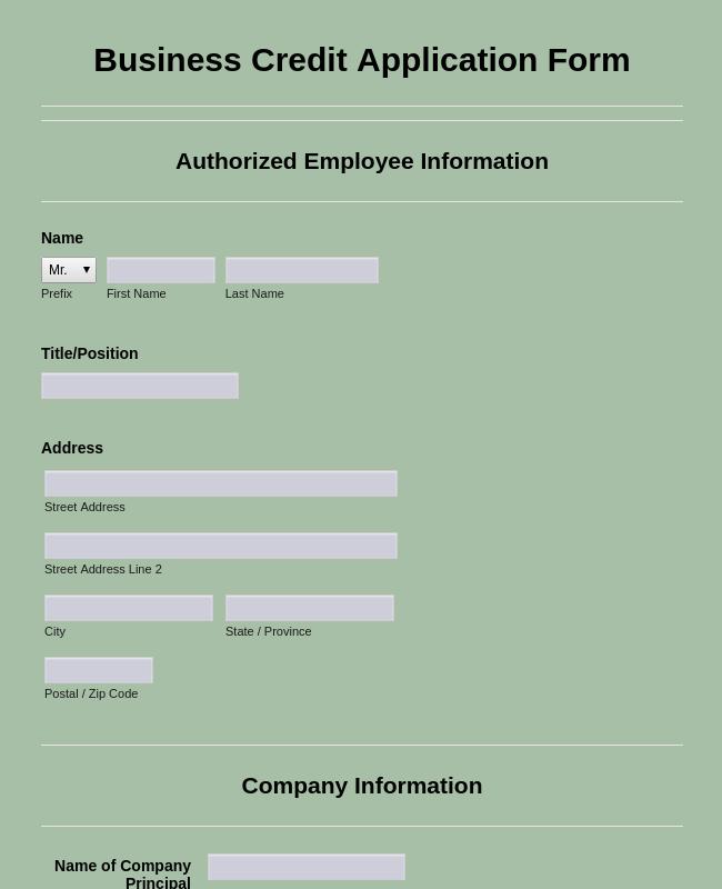 credit account application form template australia